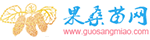 批发长果桑苗台湾超长桑葚树苗价格优惠,提供长果桑种植技术